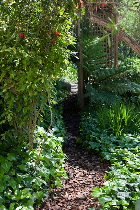 Path down to the garden and the Green belt