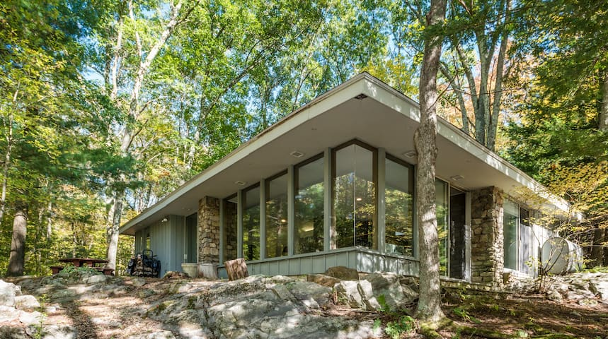 Retreat in the Woods - Frank Lloyd Wright inspired - Woodbury - Huis