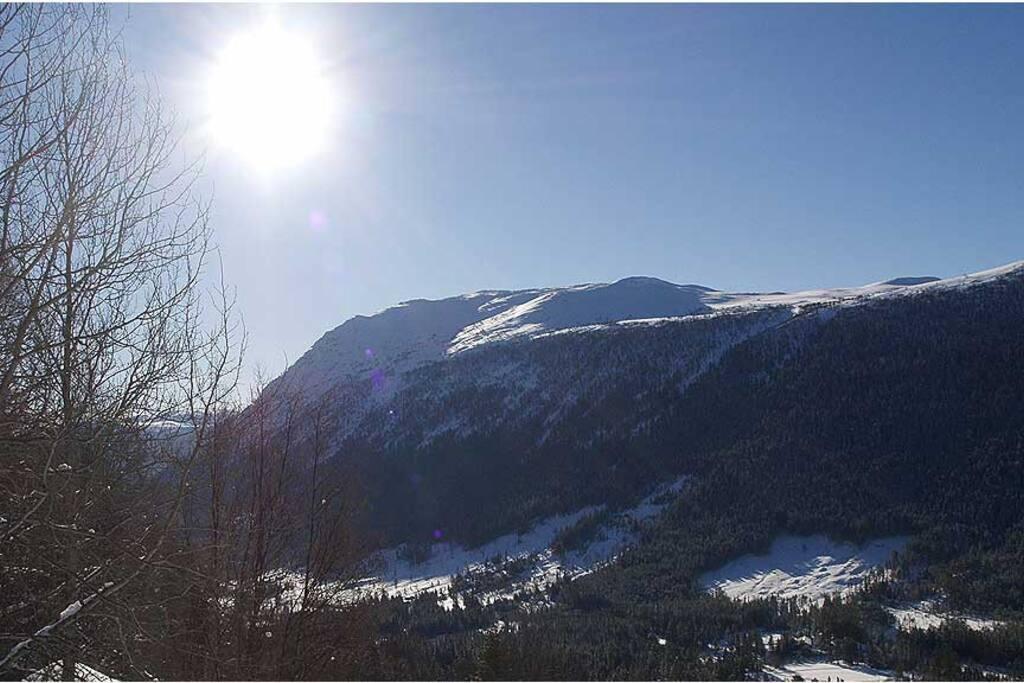 Utsikt mot øst, Imingfjell og Hardangervidda
