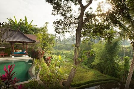 Traditional Balinese aesthetic, superimposed on a modern design and comforts, this villa complex seamlessly integrates both concepts as ingredients to a fantastic holiday. Situated 5 minutes from Ubud centre, Free bike cycle and shuttle bus