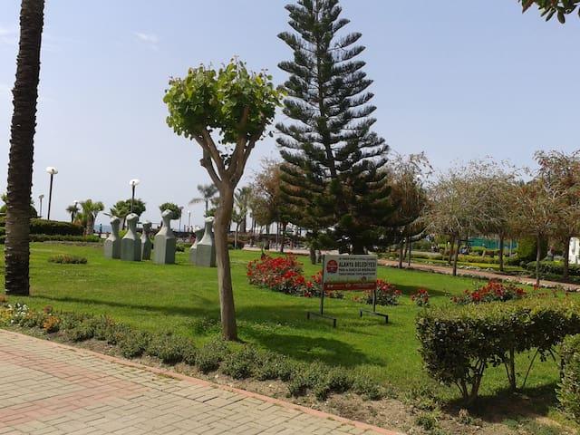 Красивые парки