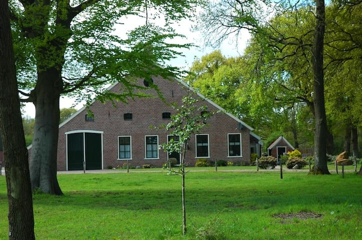 De Hiddinghhoeve - Onstwedde - Penzion (B&B)