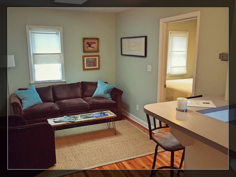 new downtown charleston urban oasis apartments for rent in charleston south carolina united. Black Bedroom Furniture Sets. Home Design Ideas