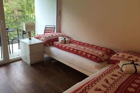 2-Zimmerwohnung mit Balkon in Laax - Laax