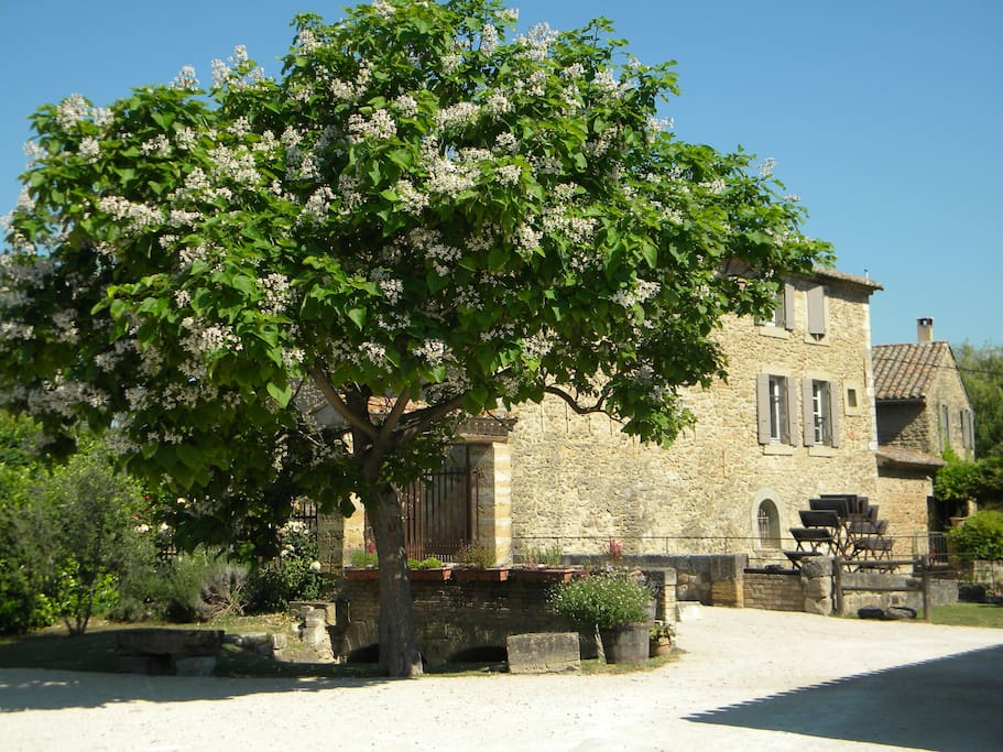 Ancient mill with heated pool houses for rent in - La table d or entraigues sur la sorgue ...