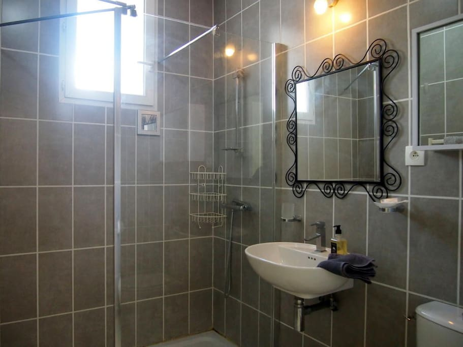 Rose shower room with large walk-in shower, handbasin and WC