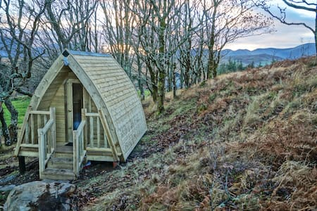 Eco glamping pods in the Oak woods. - Westport - Treehouse