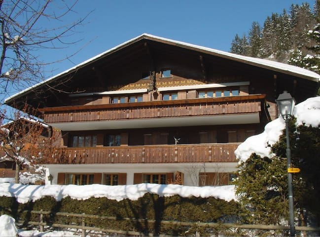 Cosy Apartment near Palace Hotel - Saanen - Wohnung