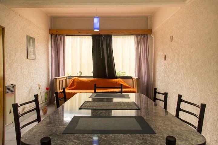 Loft aparment with bbq & terraza - Mendoza - Loft