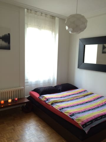 Cozy apt in the centre of Geneva!!! - Geneva - Apartment