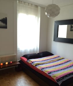 Cozy apt in the centre of Geneva!!! - Geneve - Huoneisto