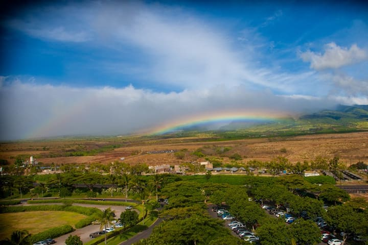 Maui Westside Properties: Hokulani 930 - Large One Bedroom with Mountain Views! - Kaanapali - Apartment