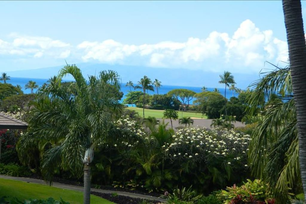 Closer View from Lanai