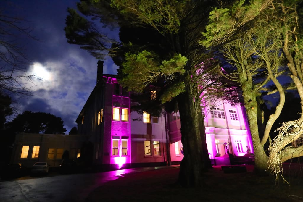 Our magical property can host amazing events.
