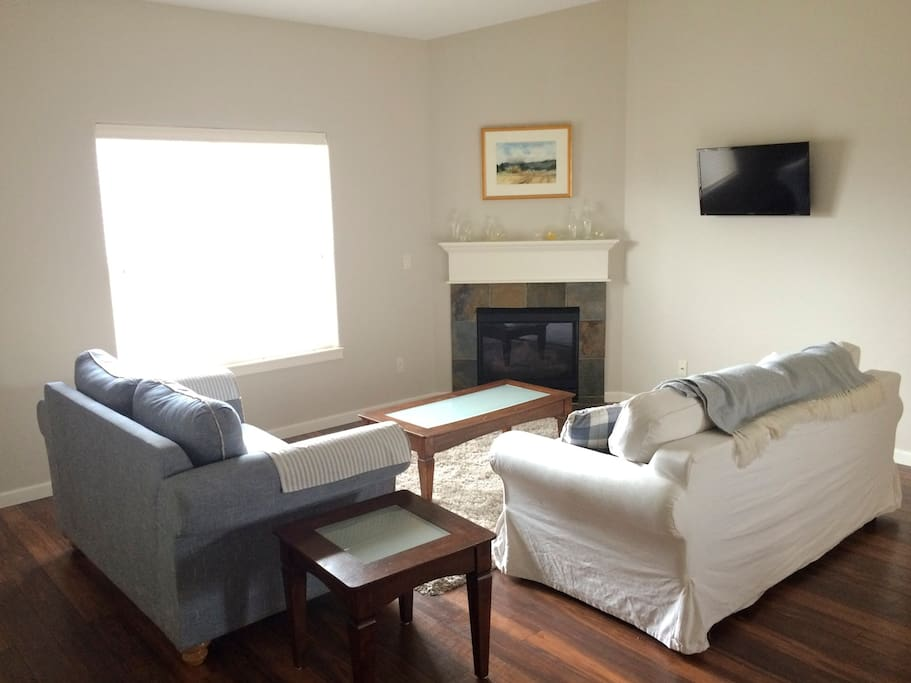living room with gas fireplace and tv with built in dvd player