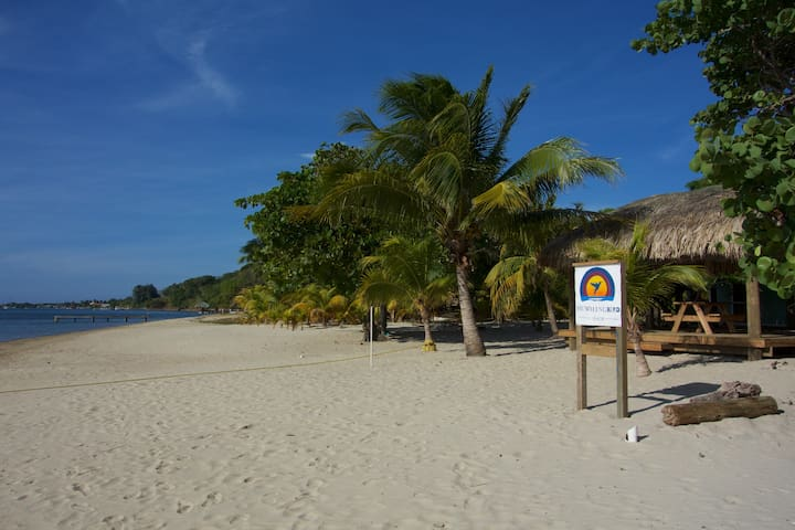 Private beach and shade deck! Relax - Roatan - Appartement