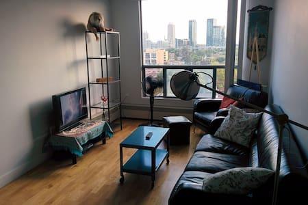 Lrg 1 bedroom in Down Town Toronto.