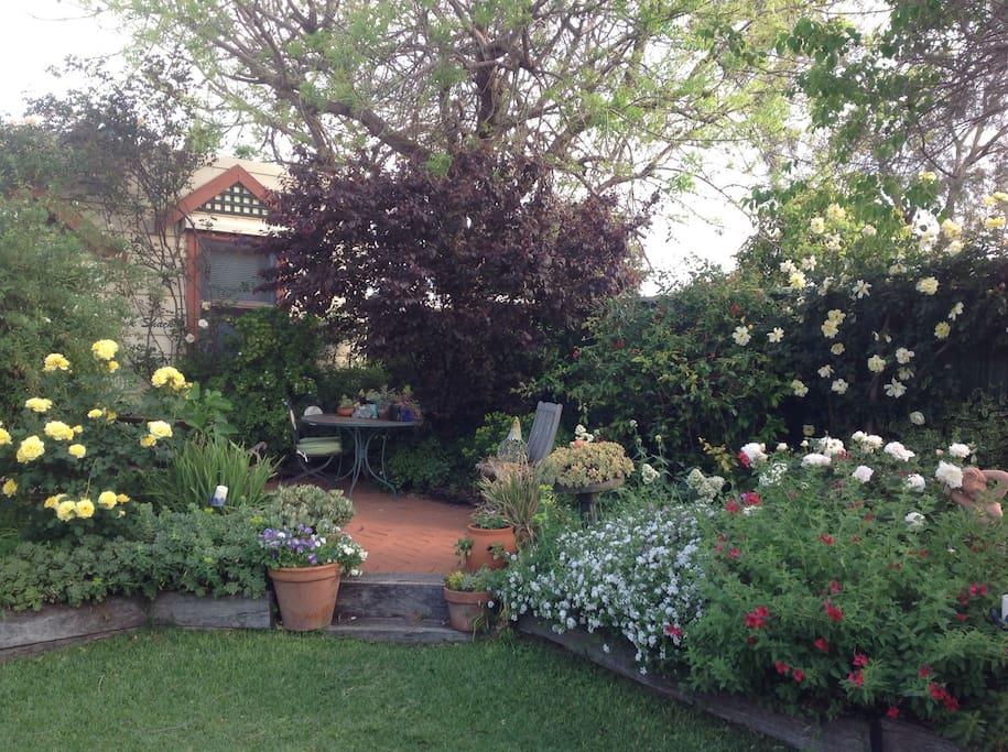 Tranquil garden setting.