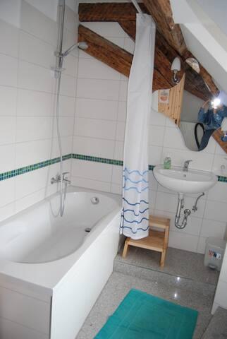 Ferienwohnung Rapunzel - Landau in der Pfalz - Wohnung