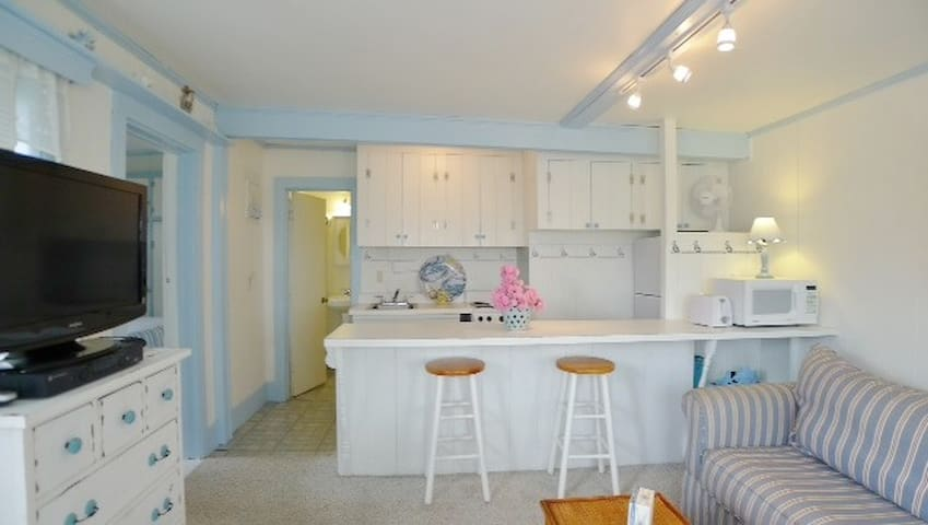 Charming Chatham Cape Cod cottage - Chatham - Condo