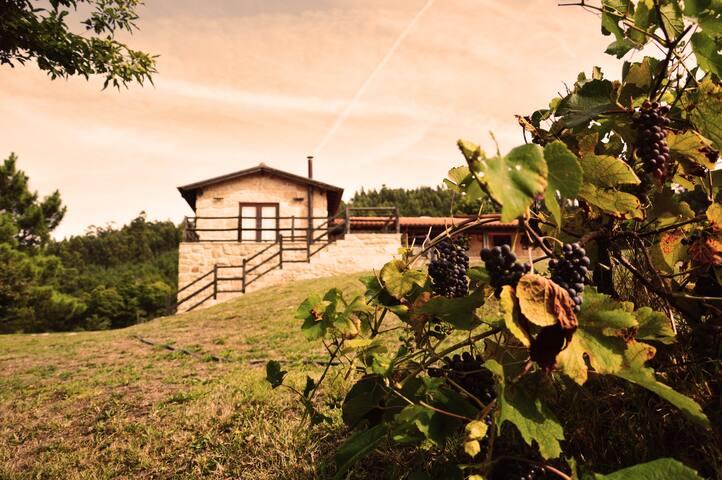 Casa Vale das Mós - Carvalheira - Villa