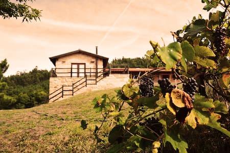 Casa Vale das Mós - Vila