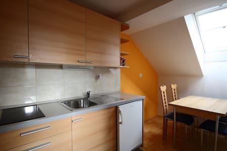 Apartma Ana - Trbovlje - Daire