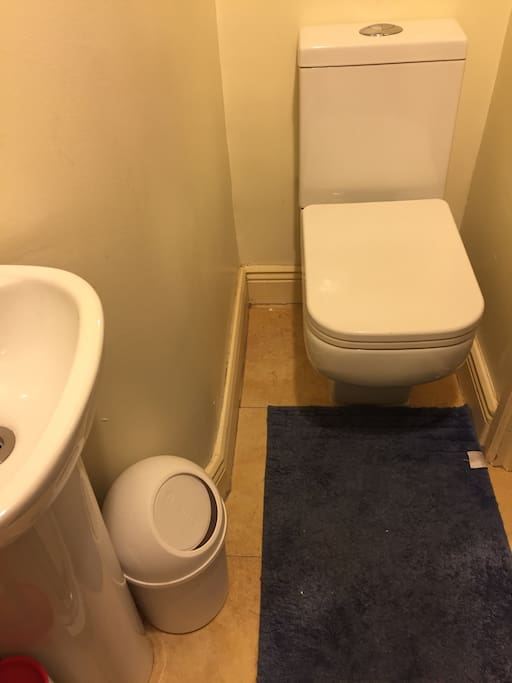 Separate shower /toilet area