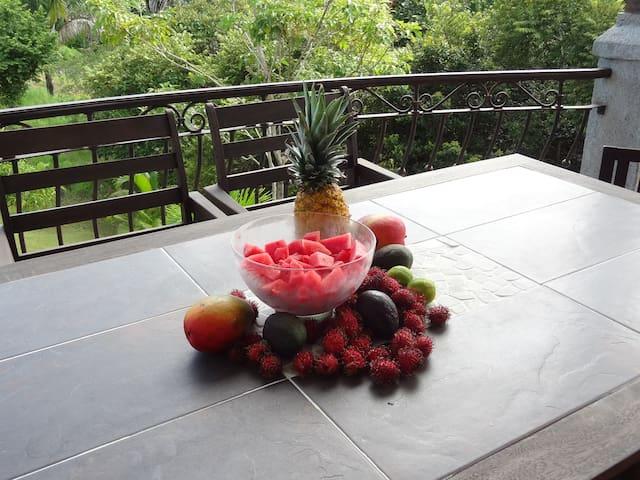 Jaco Quepos Area Costa Rican Luxury Condo from 165 - Esterillos Este - Condo