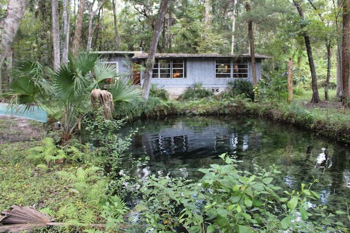 Lagoon Cabin on Homossasa River - Homosassa - Casa