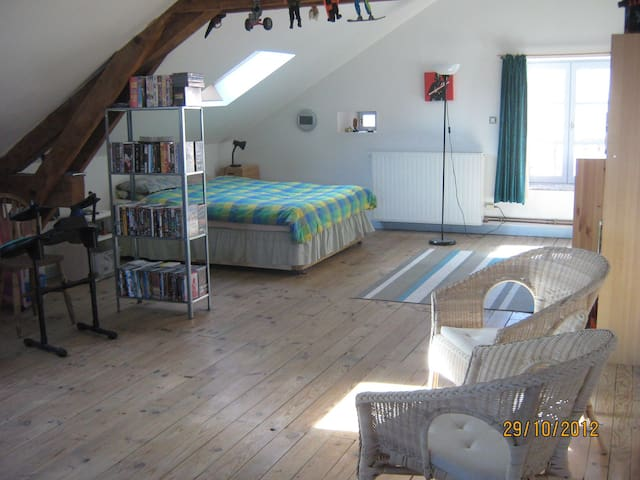 Loft with own kitchen & bathroom - Langogne - Appartement