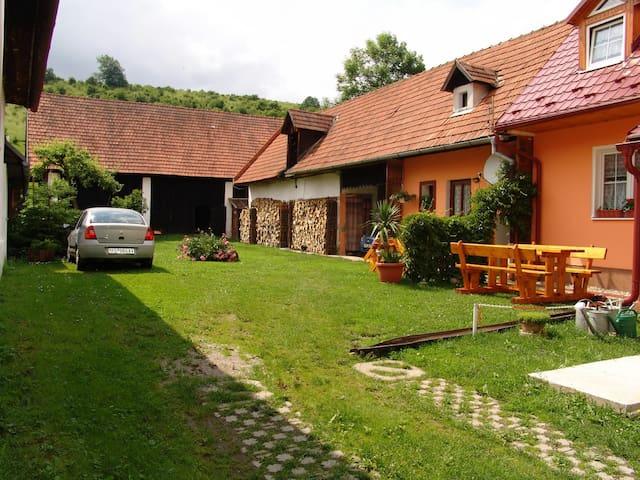 IVANA - Prosiek - House