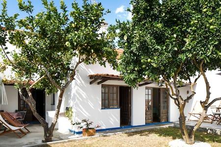 Cosy house with a lemon  tree - Vila Nova de Milfontes