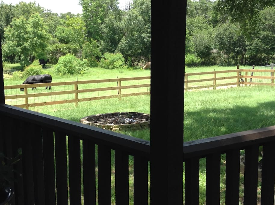 View of fire ring from the porch