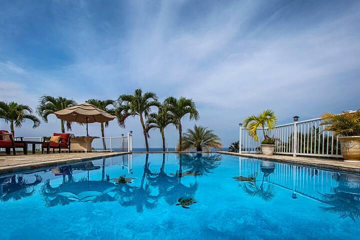 ★★Amazing ocean view huge pool/SPA/AC ♥ of town