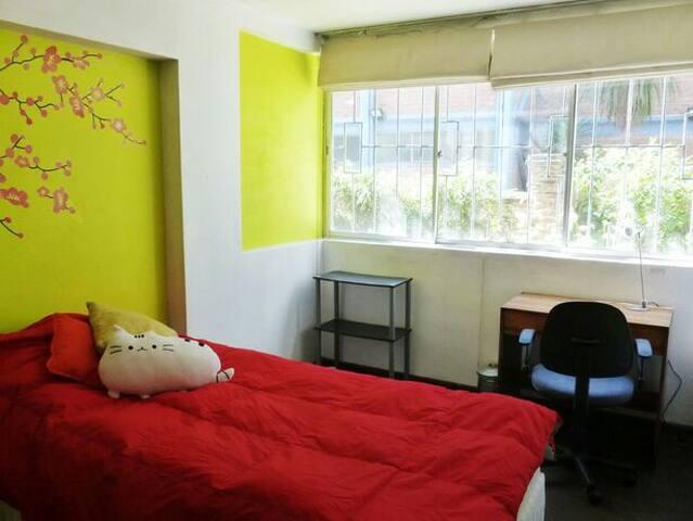 Central apartment in Viña