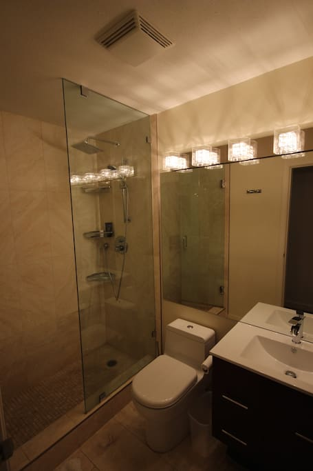 Second Bathroom with hand shower and rain shower