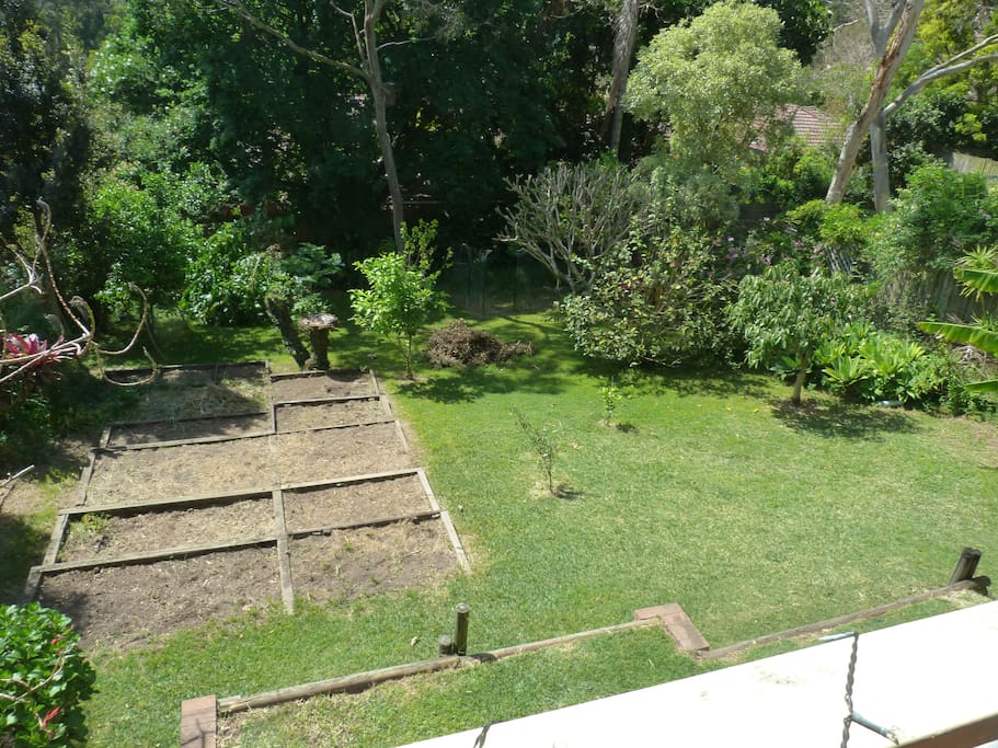 Looking down on garden from living area