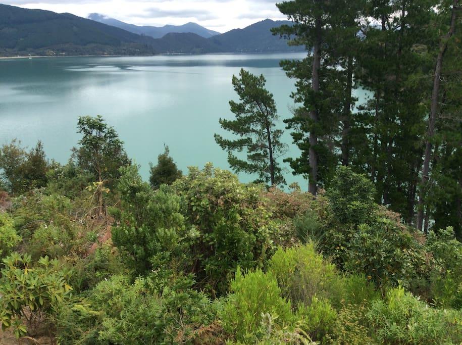 View of Mahau Sound