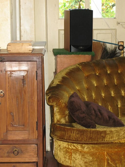 Gold velour couch with antique cabinet.