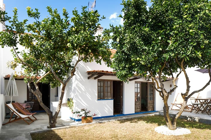 Cosy house with an orange tree