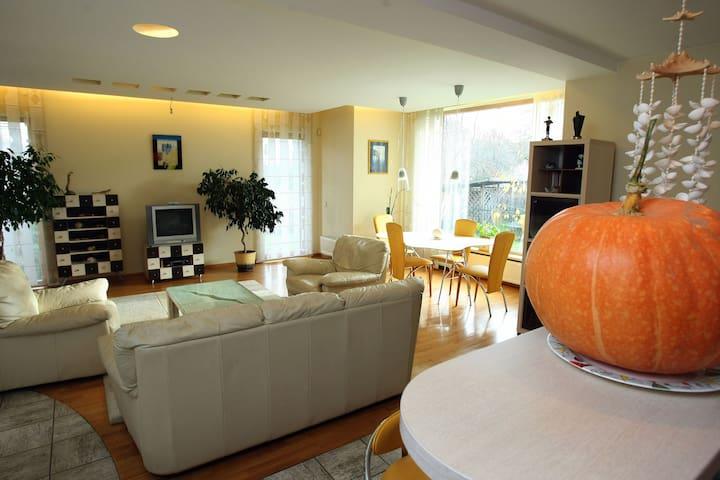 Luxury 7-room house for rent! - Vilnius - Casa