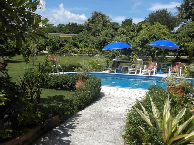 Bavarian Paradise Resort+Restaurant - Tambon San Phak Wan - Apartment