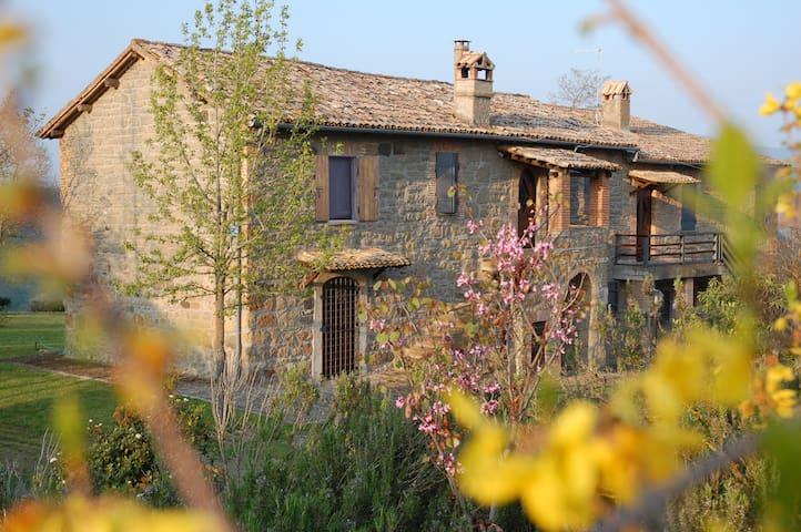 Valle dei calanchi appartamento - Civitella D'agliano