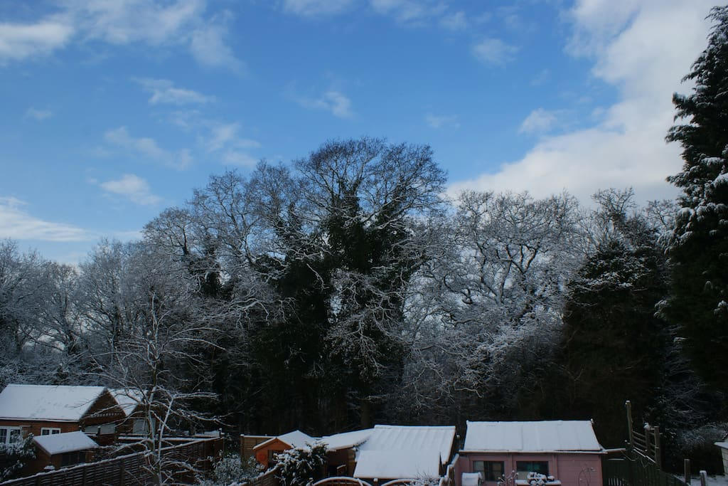 Midwinter view from bedroom window
