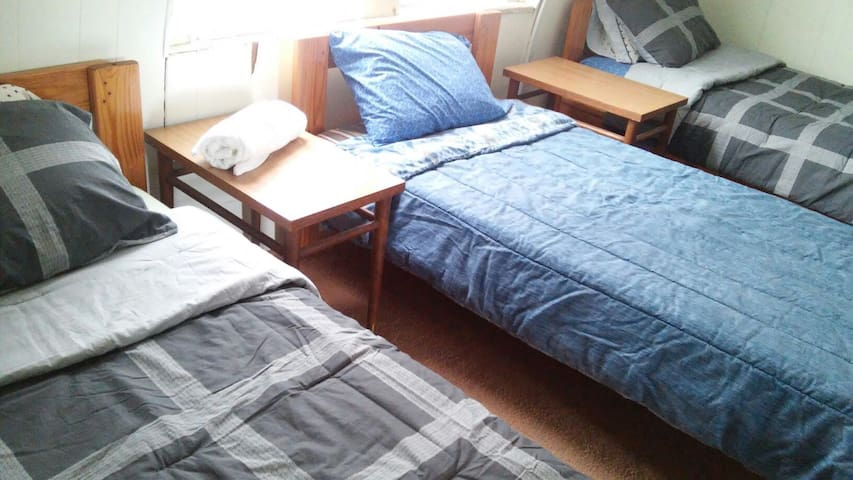 Single Bed in a shared dorm room