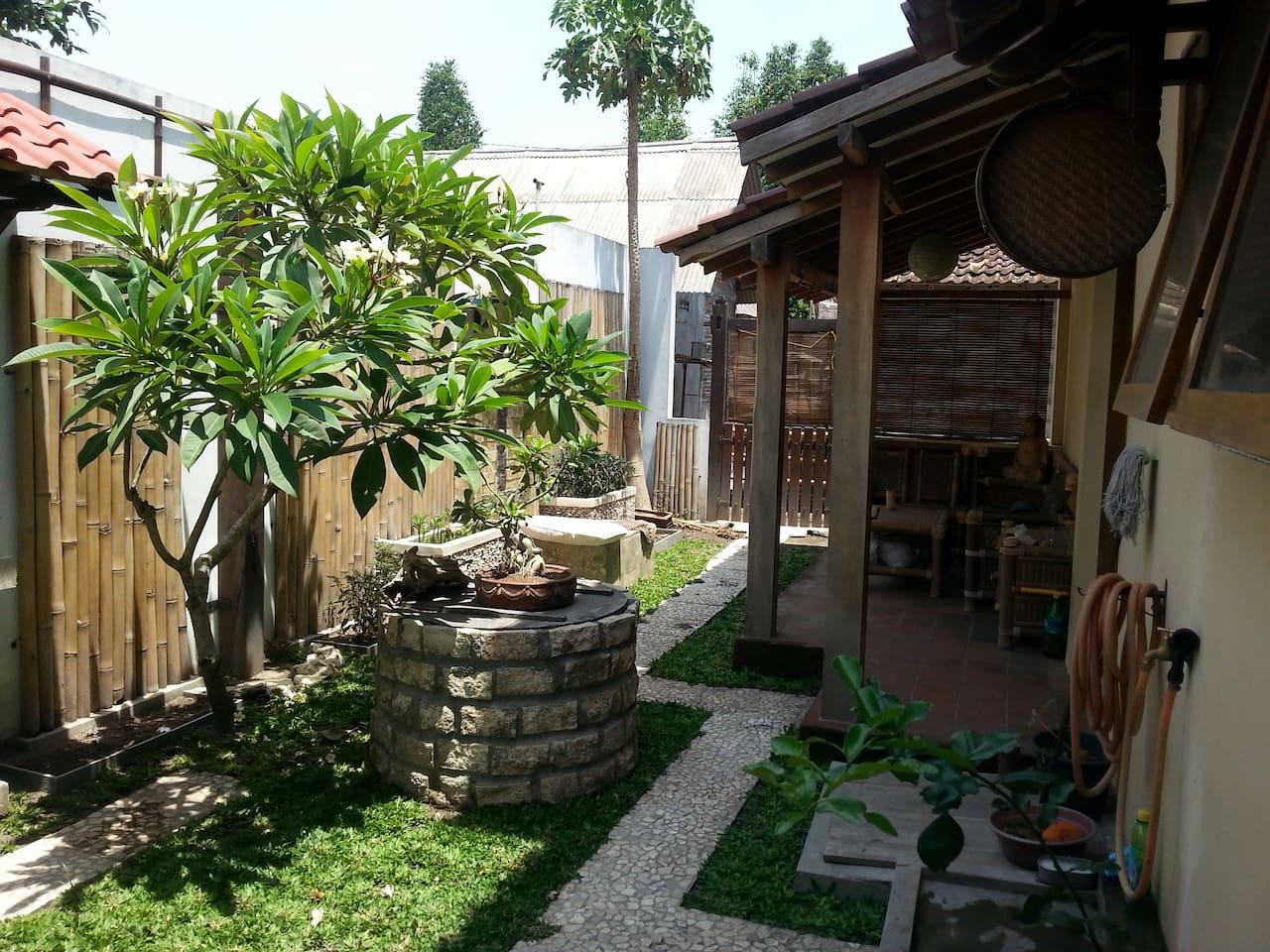 Petit jardin très agréable  situe derrière la maison idéal pour prendre le petit dej' et l'apéro !