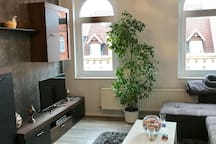 Clean and comfortable apartment in the heart of H