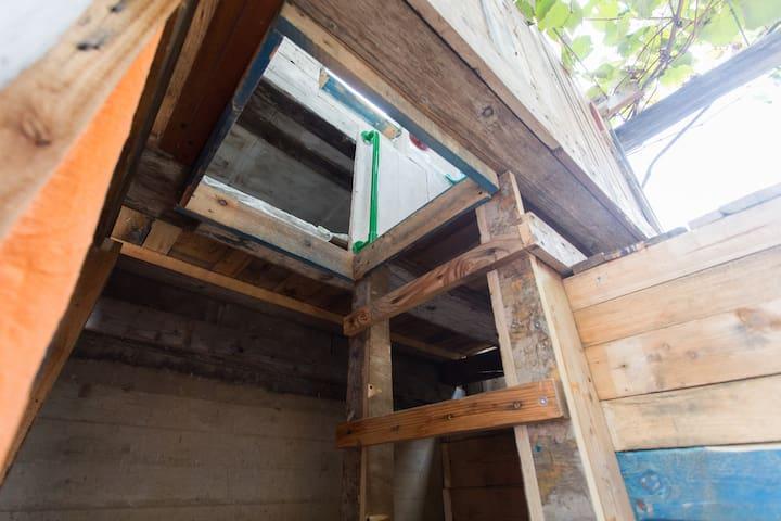 tiny treehouse /casa sull'albero - Roma/dragona - Boomhut