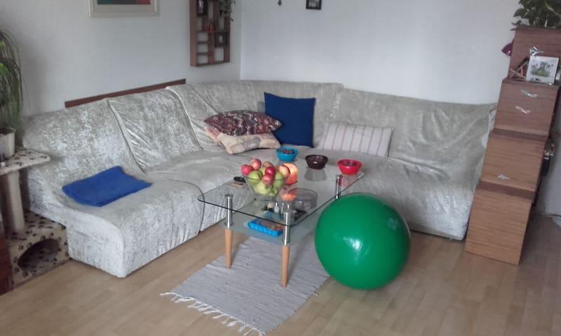 Dvoupokojový byt v Plzni - Plzeň - Apartment